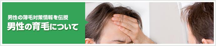 男性の育毛について